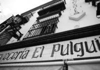 EL PULGUILLA VIGILANTE